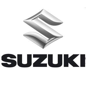 Metamorphosis Suzuki